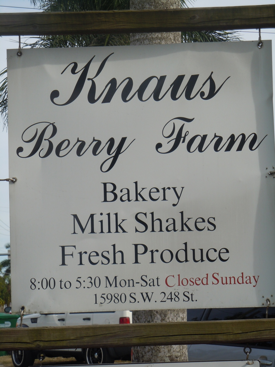 Hidden Miami Treasure? Not for Locals, Knaus Berry Farm is Quite the Treat